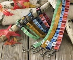 AKC Recycled Dog Collars for Sale