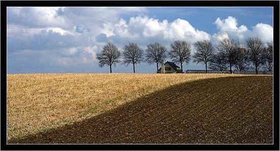 Ending Rural Hunger: Farmland by Jeroen Van Daal