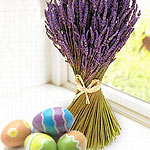 using natural plant dyes for easter eggs