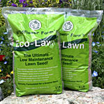 Eco-Lawn Grass Seed